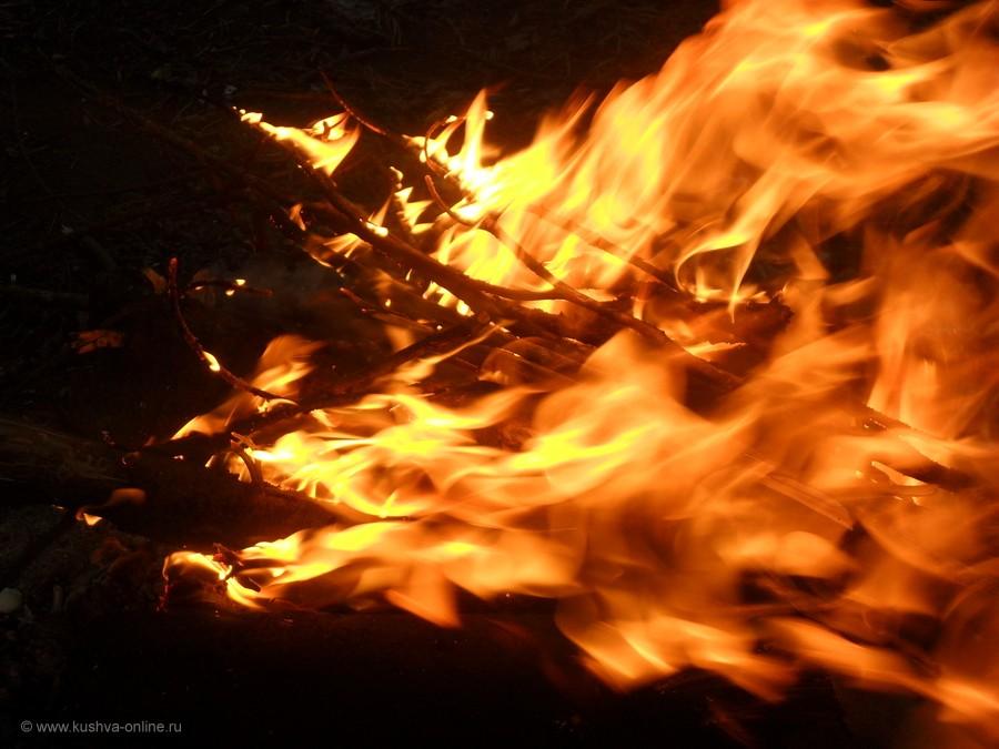 Фото дня от 17 октября 2011 г. г. Автор: Ольга Волкова