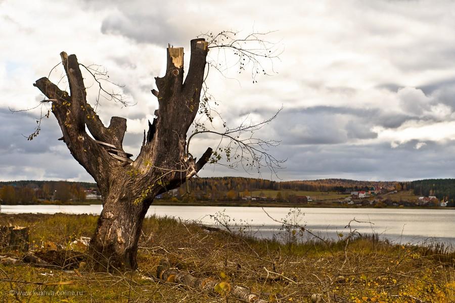 Фото дня от 6 октября 2011 г. г. Автор: Александр Скрябин