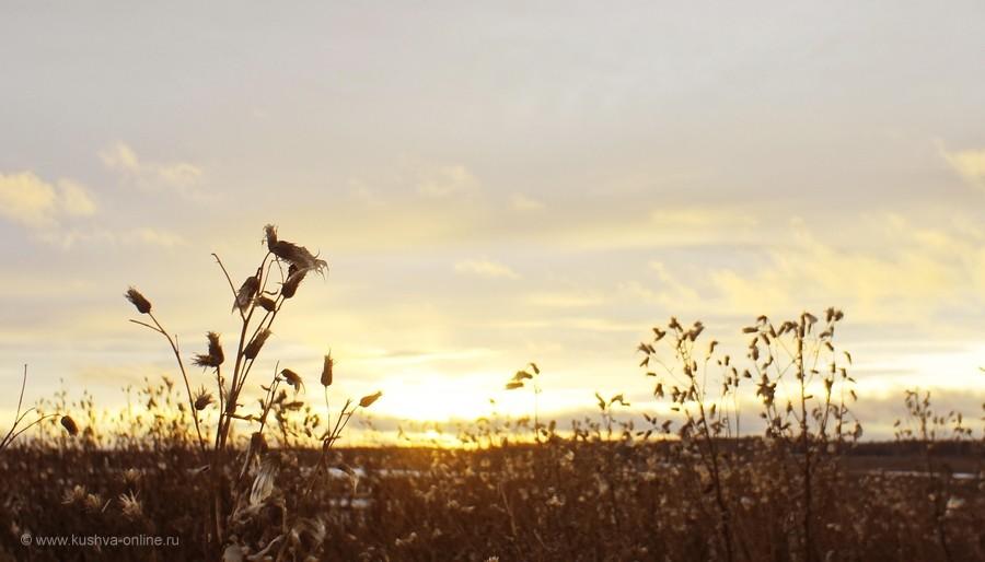 Фото дня от 3 ноября 2011 г. г. Автор: Frostbite
