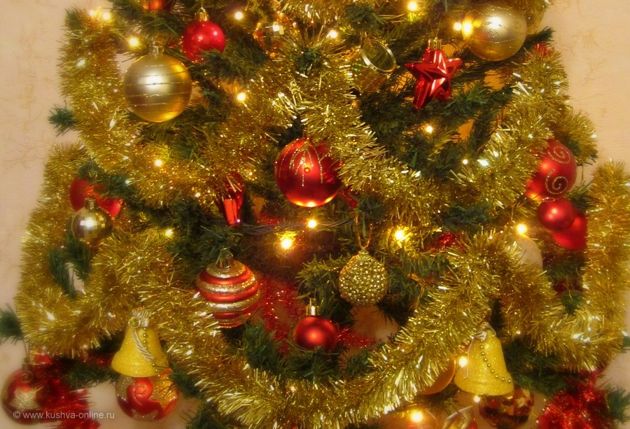 Фото дня от 29 декабря 2011 г. г. Автор: Луиза Садкова