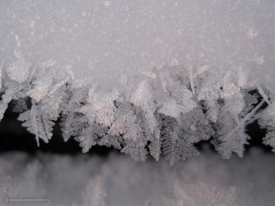 Фото дня от 26 декабря 2011 г. г. Автор: Луиза Садкова