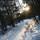 23 января 2012 г. © Андрей Шелухин