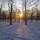26 января 2012 г. © Александр Меньщиков