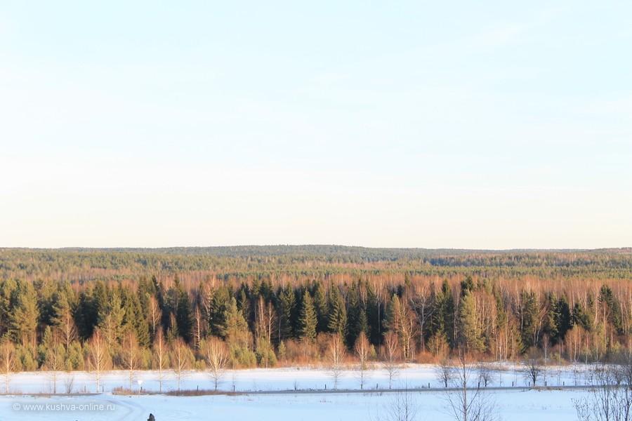 Фото дня от 1 февраля 2012 г. г. Автор: Оксана Сединкина