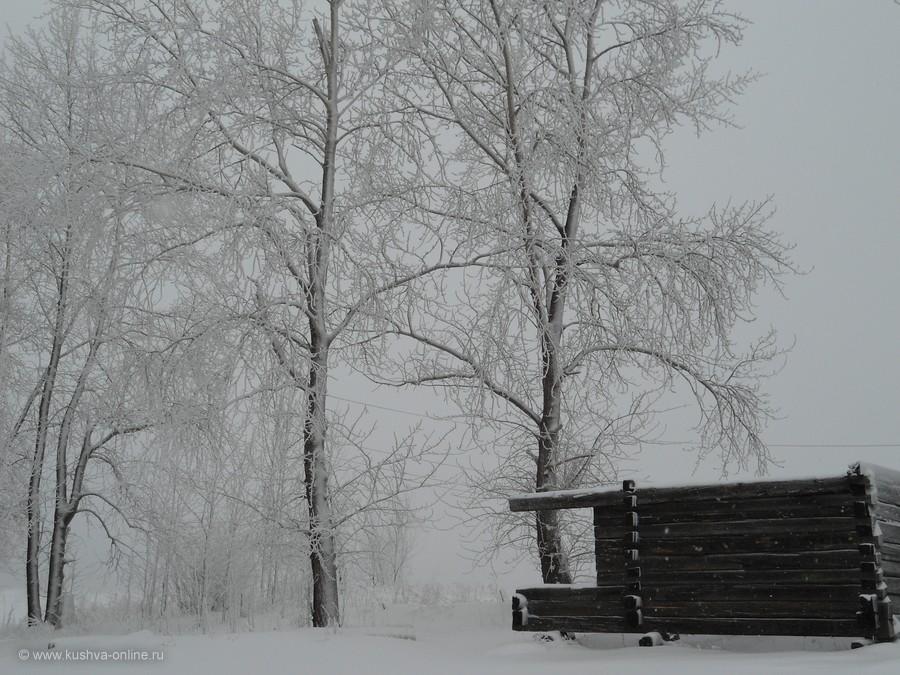 Фото дня от 17 февраля 2012 г. г. Автор: Funny Fancy