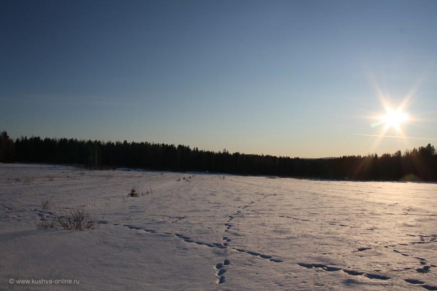 Фото дня от 2 февраля 2012 г. г. Автор: Андрей Шелухин