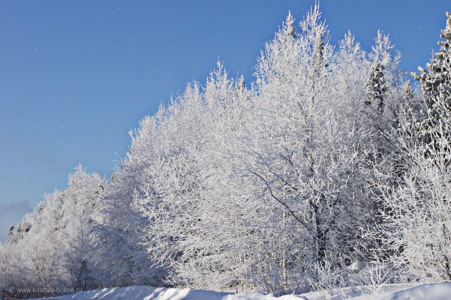 Фото дня от 8 февраля 2012 г. г. Автор: Даша Зырянова