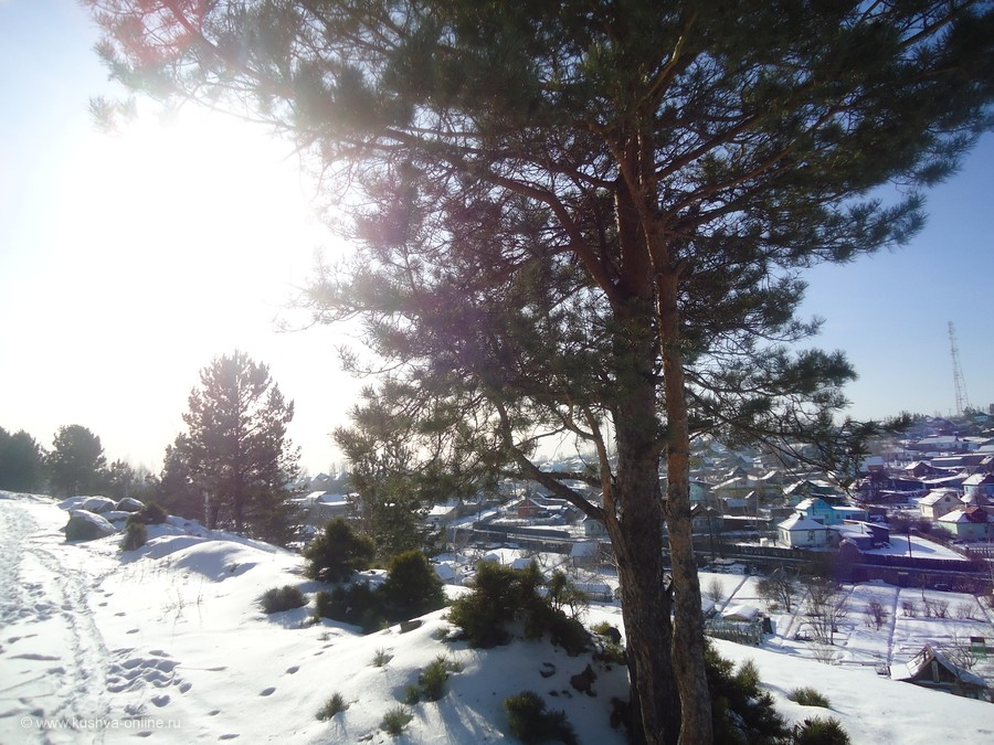 Фото дня от 29 февраля 2012 г. г. Автор: Елена Гурьянова