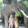 Всей семьей мы любим путешествовать. Это я с папой и мамой отдыхала зимой на райском острове Бали. Там очень здорово. Всей семьей мы ходили в сафари парк, где все животные ходят по территории парка, а не сидят в клетках. © Валентина Фидирко ДОУ № 30