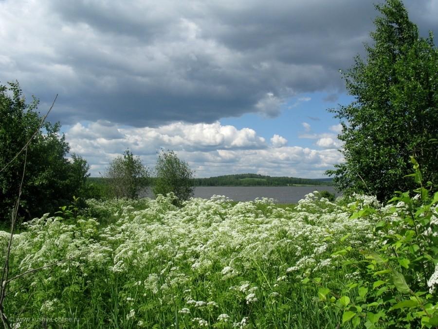 Фото дня от 3 июля 2012 г. г. Автор: Эльвира Файзутдинова
