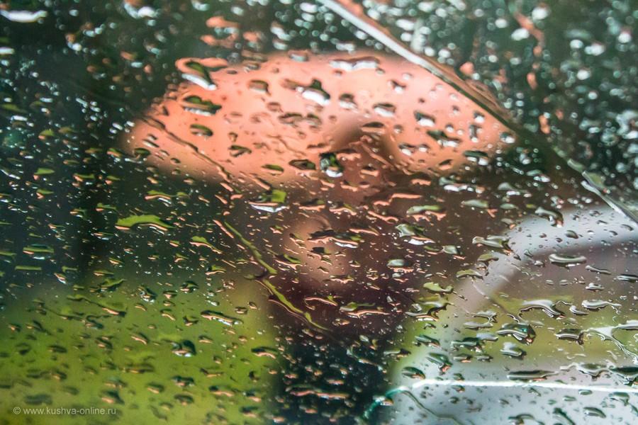 Фото дня от 22 августа 2012 г. г. Автор: Оксана Сединкина