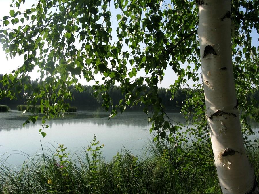 Фото дня от 7 августа 2012 г. г. Автор: Эльвира Файзутдинова