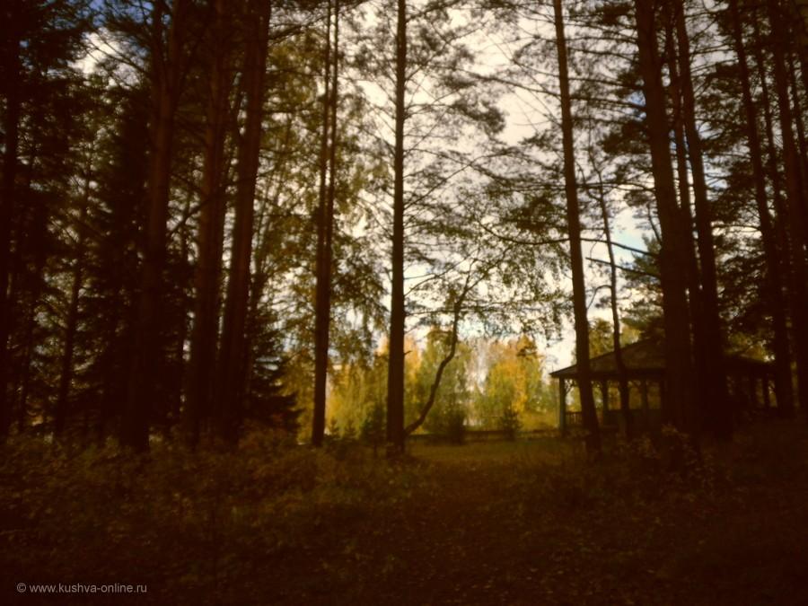 Фото дня от 22 сентября 2012 г. г. Автор: Татьяна Хаснутдинова