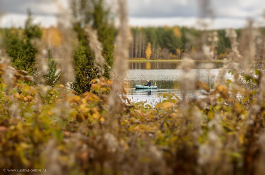 Фото дня от 29 сентября 2012 г. г. Автор: Александр Скрябин