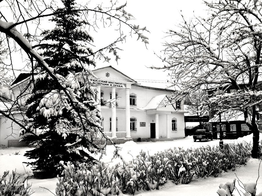 Фото дня от 26 ноября 2012 г. г. Автор: tuman