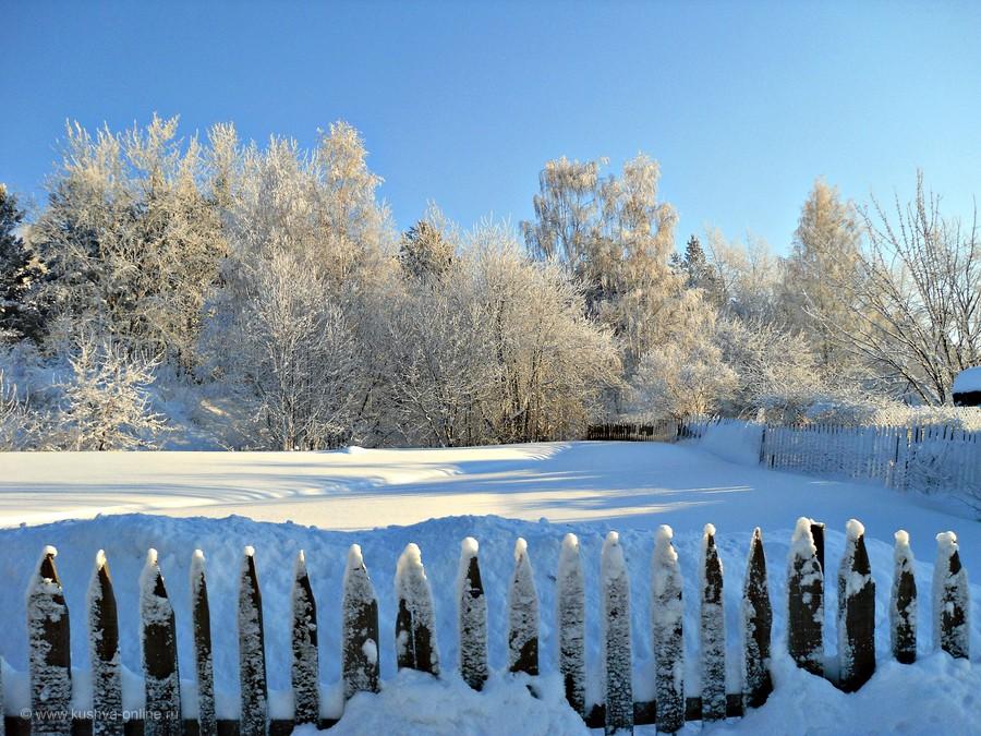 Фото дня от 26 декабря 2012 г. г. Автор: tuman