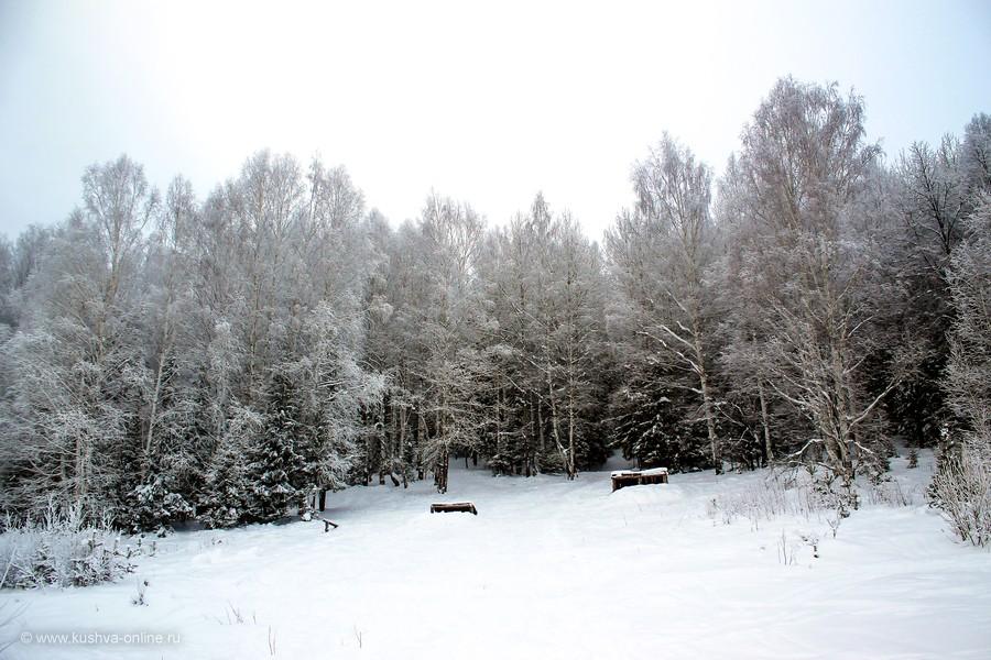 Фото дня от 14 декабря 2012 г. г. Автор: Оксана Сединкина