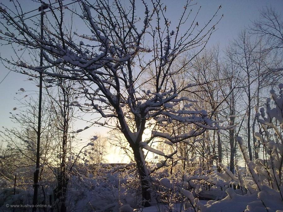 Фото дня от 18 декабря 2012 г. г. Автор: tanjaM