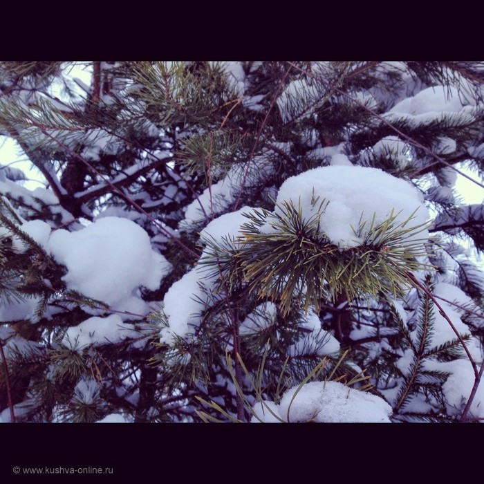 Фото дня от 10 января 2013 г. г. Автор: Андрей Шелухин