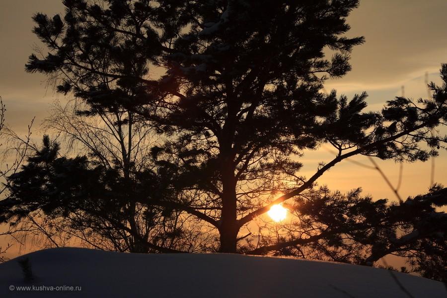 Фото дня от 6 февраля 2013 г. г. Автор: Lessi