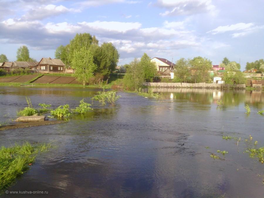 Фото дня от 10 июня 2013 г. г. Автор: Наталия Калганова
