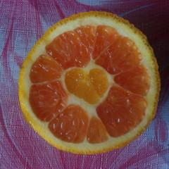В свадебный сезон даже апельсины растут с сердцем © tanjaM