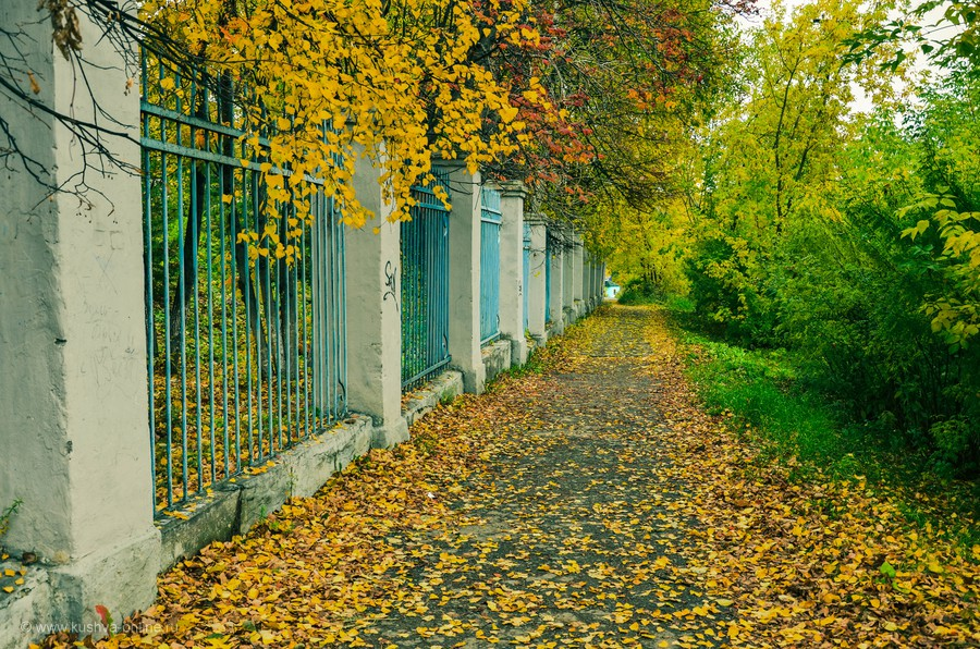 Фото дня от 22 октября 2013 г. г. Автор: Андрей Бородулин