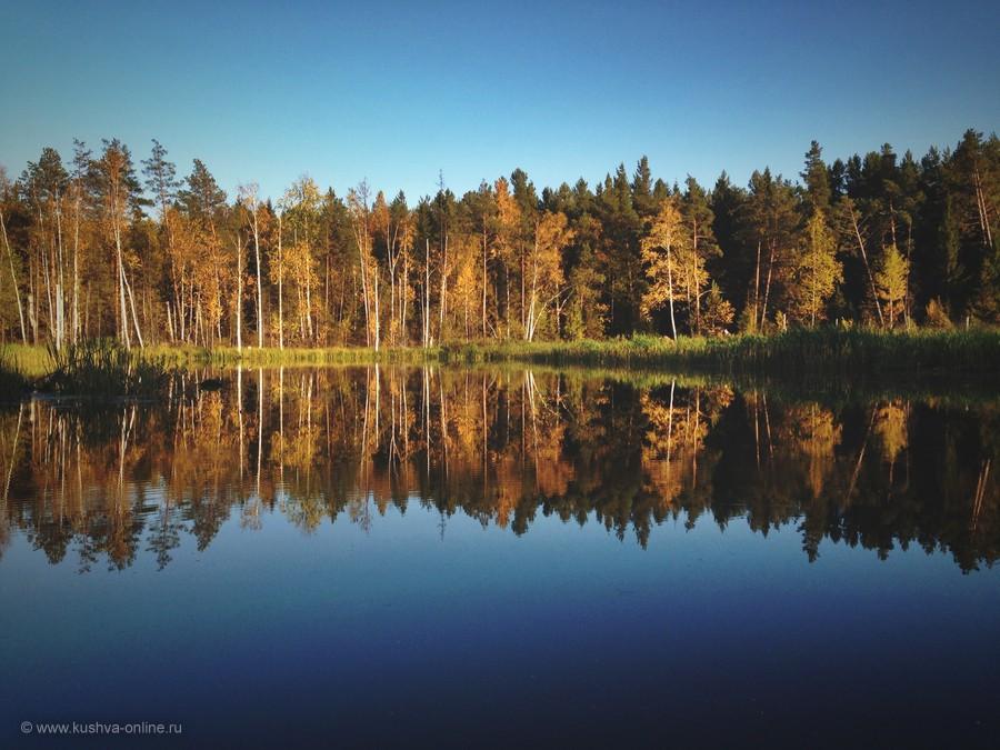 Фото дня от 10 ноября 2013 г. г. Автор: Иван Садков