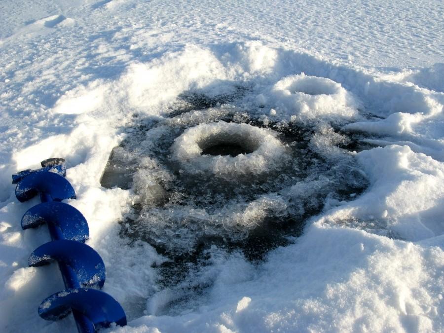 Фото дня от 9 декабря 2013 г. г. Автор: Эльвира Файзутдинова