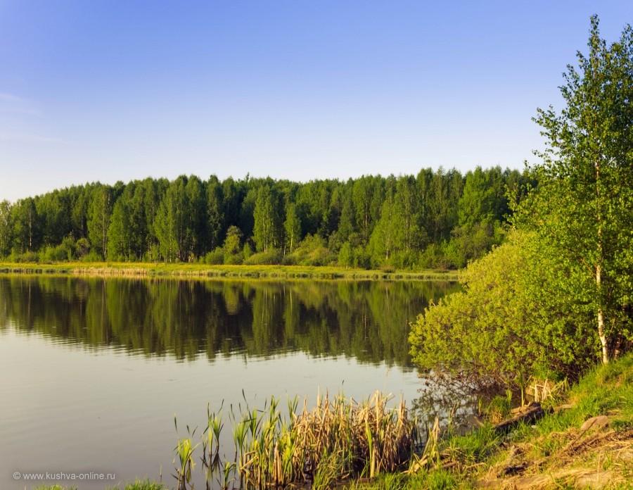 Фото дня от 6 июля 2014 г. г. Автор: Андрей Бородулин