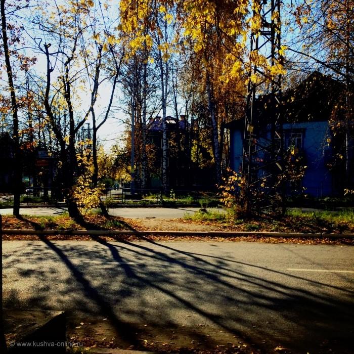 Фото дня от 7 октября 2014 г. г. Автор: RebelliousFlower
