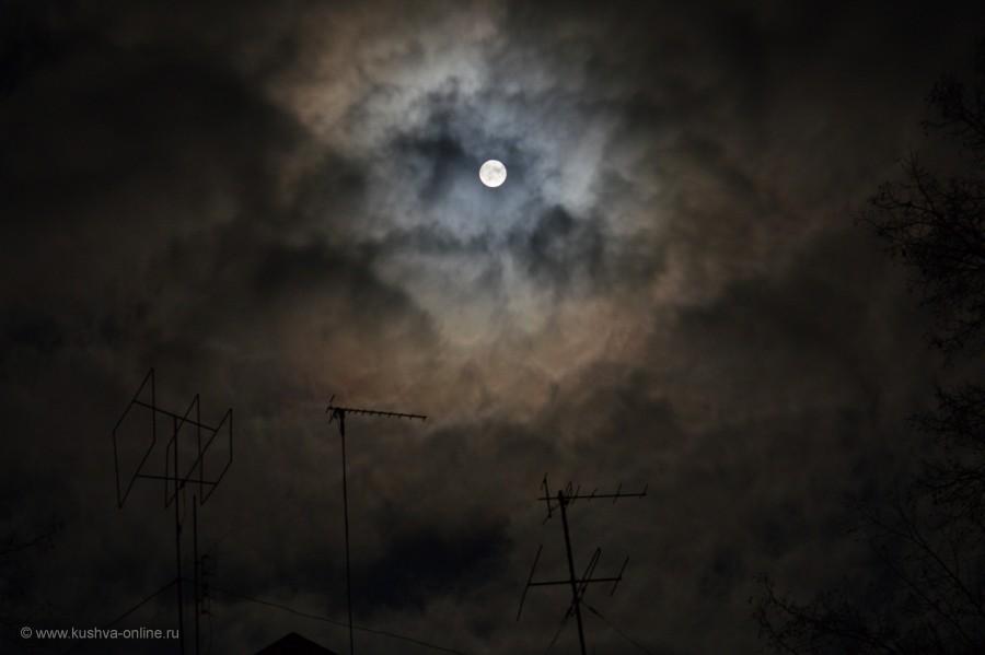 Фото дня от 24 октября 2014 г. г. Автор: Александр Монахов
