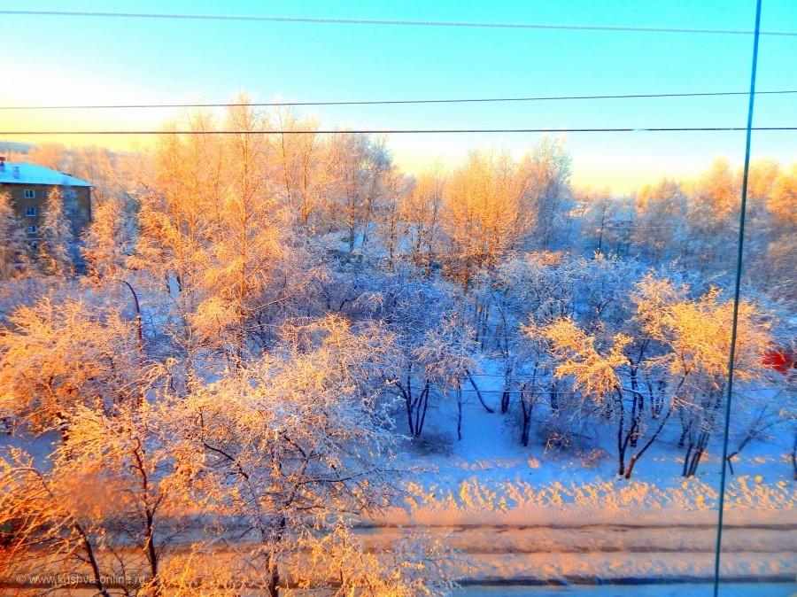 Фото дня от 22 декабря 2015 г. г. Автор: Катерина Бородина