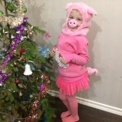 Я, конечно, не легка,  тяжелей снежинки.  И порой грязны бока  у веселой Свинки.  Но сегодня я умылась  и на елку к вам явилась. © Арина Казакова, 7 лет
