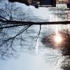 Звезда прячется в ветвях © Мансур