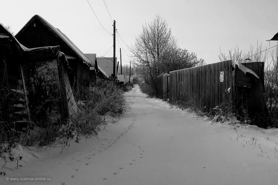 Фото дня от 13 ноября 2019 г. г. Автор: Алексей Лукин