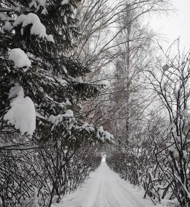 ... © Светлана Юрлова