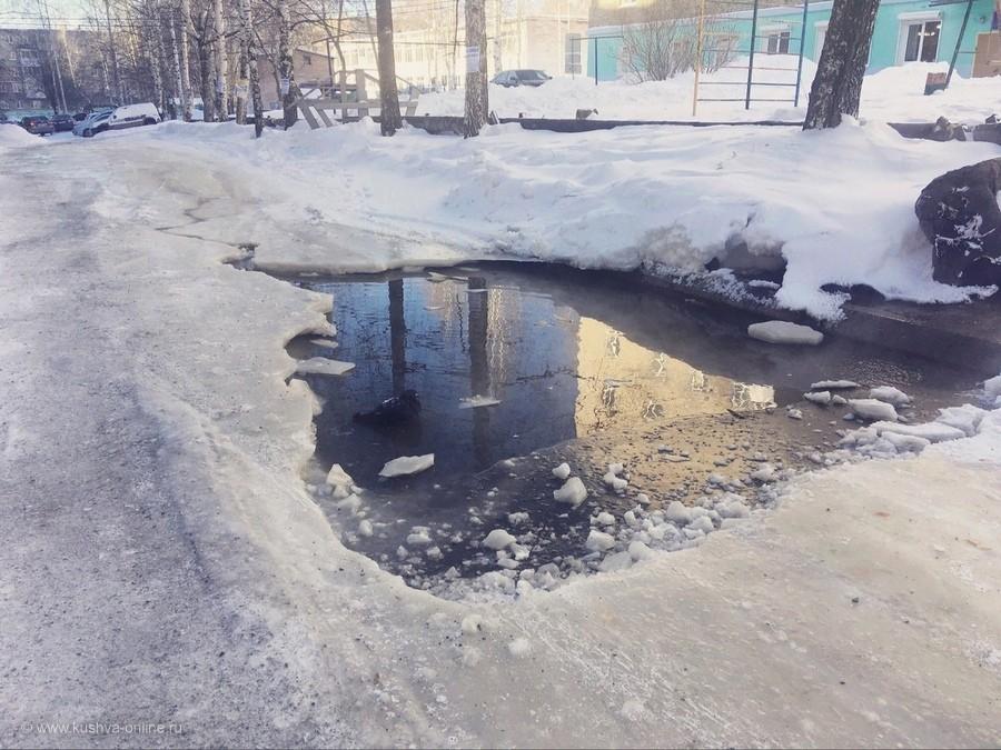 Местное «озеро» и псевдо-лебедь © Ольга Сидорова